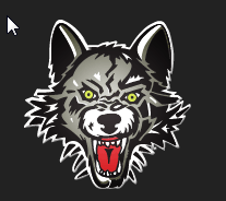 Chicago Wolves Hockey
